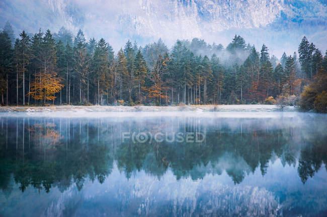 Reflexiones de bosque otoñal en un lago, Bluntautal cerca de Golling, Salzburg, Austria - foto de stock