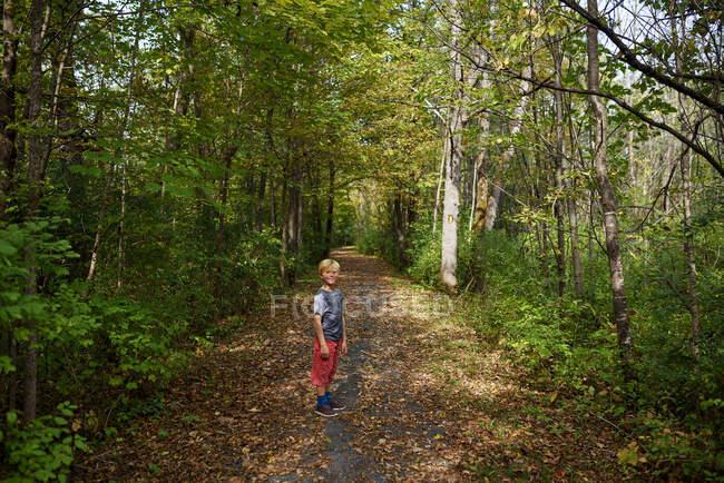 Niño de pie en un sendero a principios de otoño, Estados Unidos - foto de stock