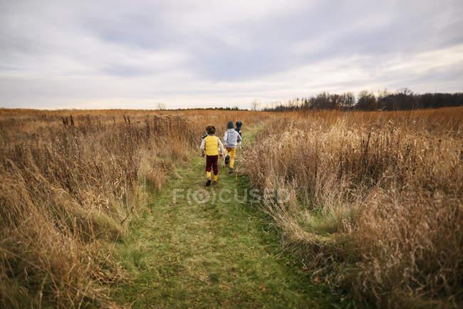 Três crianças correndo em um campo, Estados Unidos — Fotografia de Stock