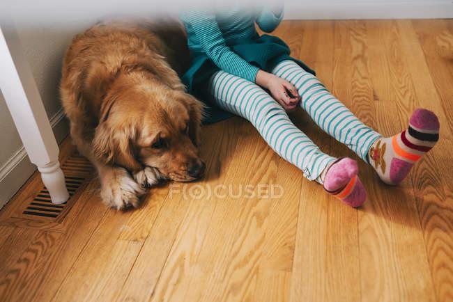 Chica sentada debajo de una mesa con su perro golden retriever - foto de stock