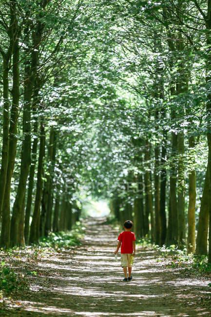 Junge, der auf einem baumbestandenen Fußweg geht — Stockfoto