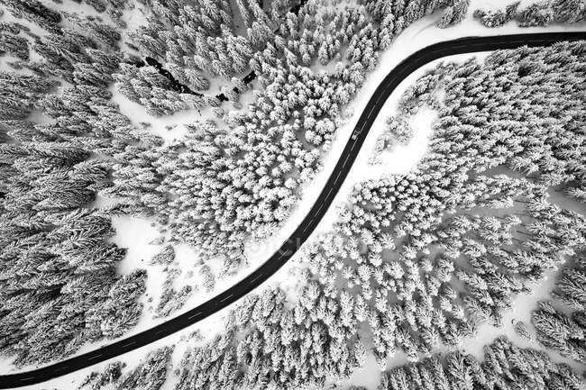 Aerial view on a road winding through snow covered trees in the Austrian Alps. — Stock Photo
