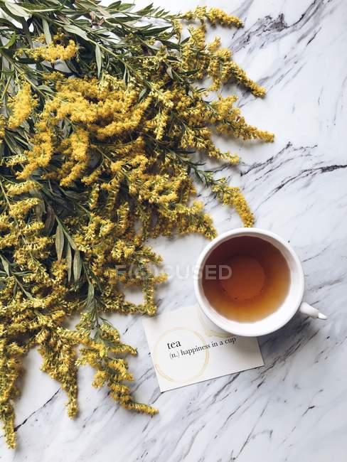 Чашка чая, желтые золотистые цветы и карточка с определением чая — стоковое фото