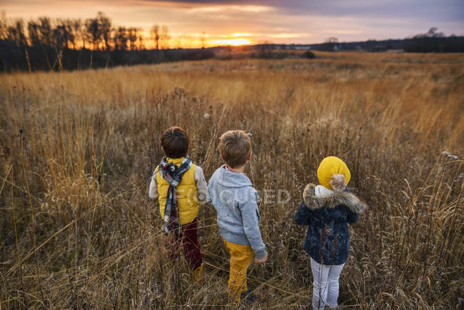 Three children standing in a field at sunset, United States — Stock Photo