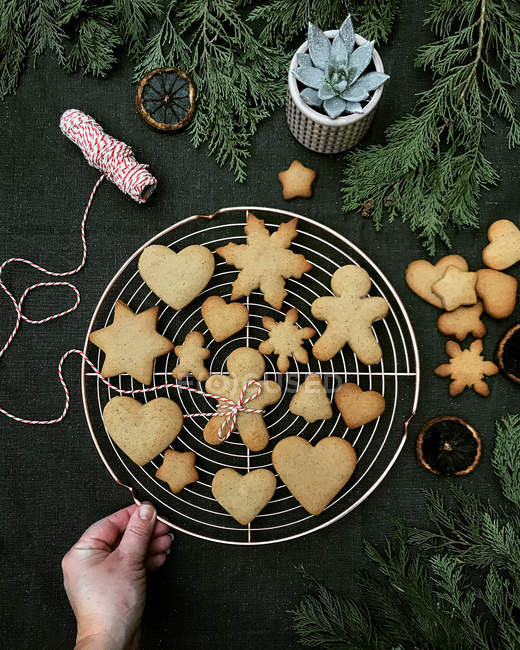 Woman hand on a cooling rack with Christmas gingerbread cookies — Stock Photo