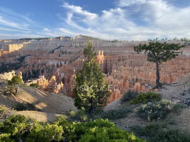 Parque Nacional Bryce Canyon paisaje, Utah, Estados Unidos - foto de stock