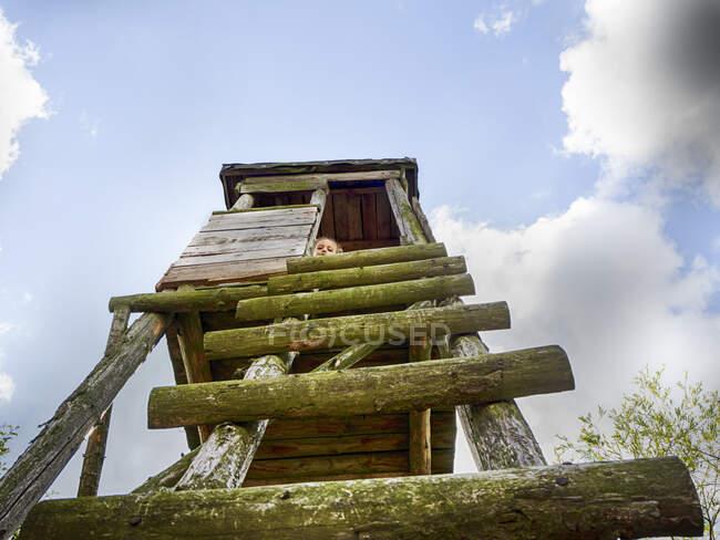 Vista de ángulo bajo de una niña sentada en una torre de observación de madera en un jardín, Polonia - foto de stock