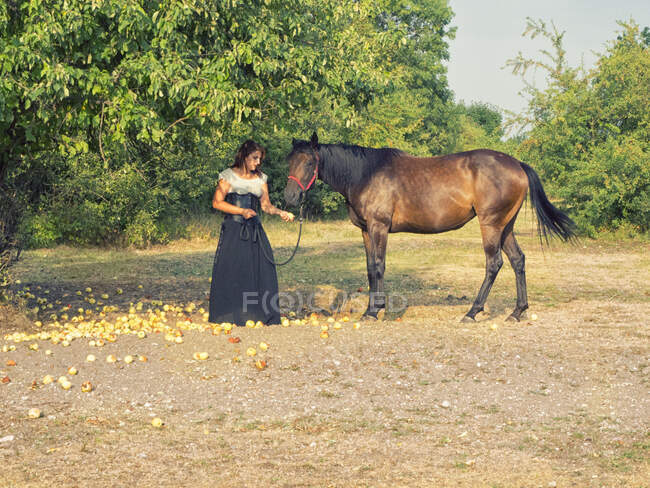 Woman standing in a field feeding apples to a horse, Poland — Stock Photo