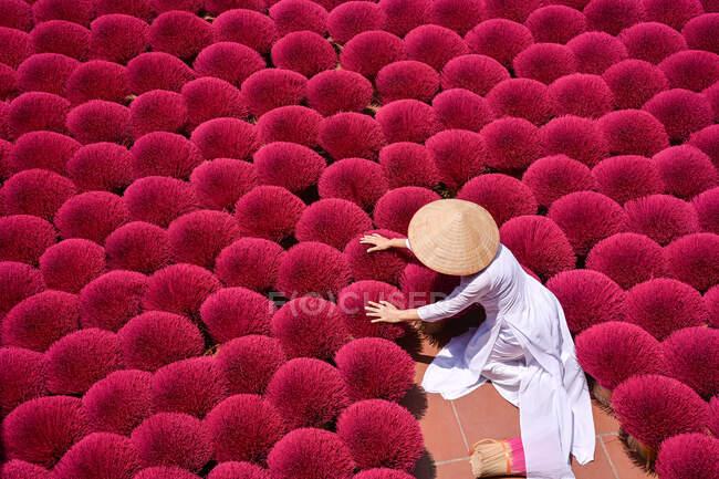 Mulher recolhendo palitos secos incenso, Hanói, Vietnã — Fotografia de Stock