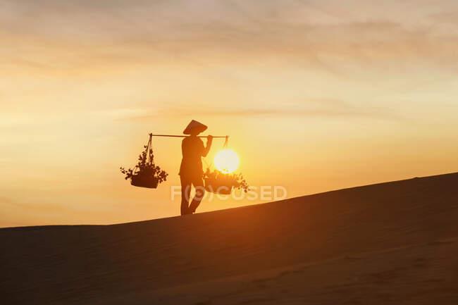 Donna che trasporta cestini attraverso una duna di sabbia al tramonto, Mui Ne, Vietnam — Foto stock