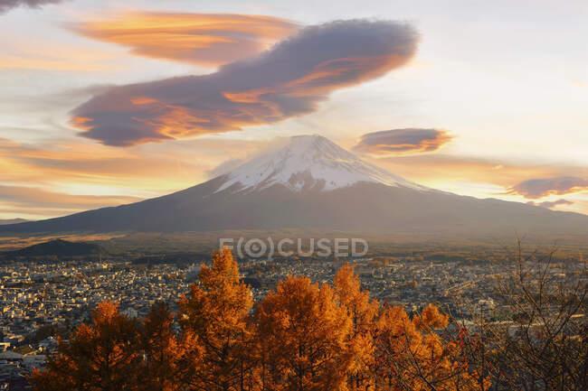 Monte Fuji al atardecer con un arce en primer plano, Honshu, Japón - foto de stock