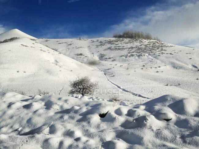 Paisaje rural invernal en las montañas del Cáucaso, Georgia - foto de stock