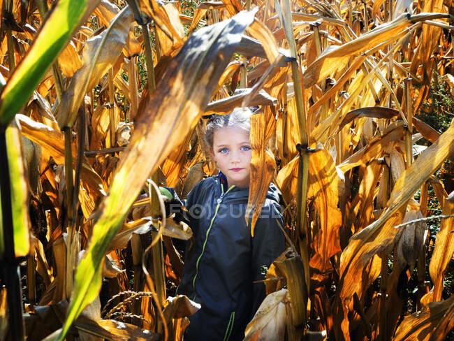 Портрет девушки, стоящей на кукурузном поле, Польша — стоковое фото