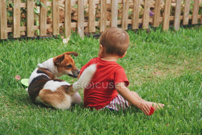 Boy sitting in garden playing with his dog — Stock Photo