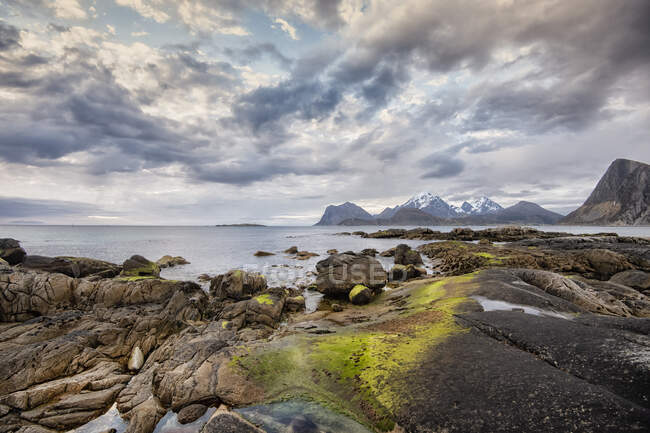 Rocky coastal landscape, Lofoten, Nordland, Norway — Stock Photo