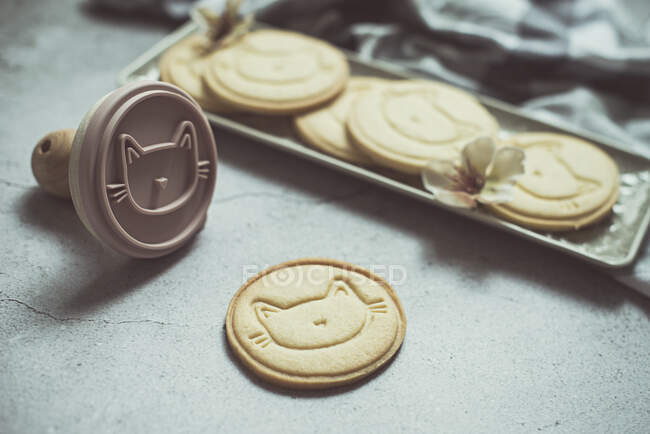 Galletas caseras con caras de gato - foto de stock