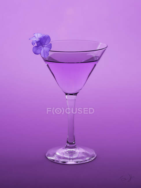 Conceptual purple cocktail with a violet flower blossom — Stock Photo