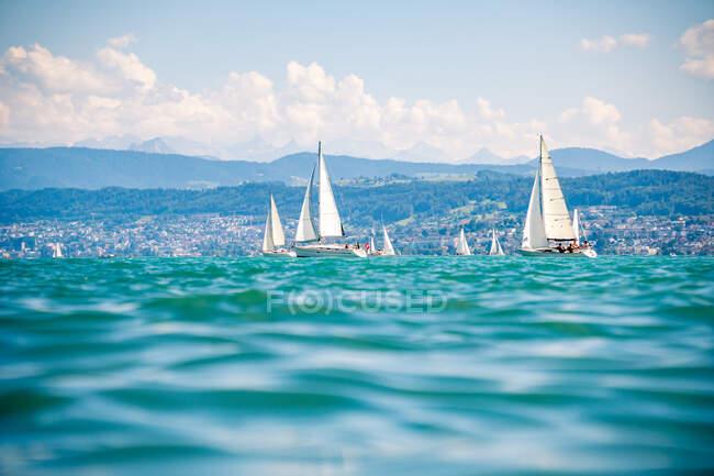 Sailing boats on Lake Zurich, Switzerland — Stock Photo