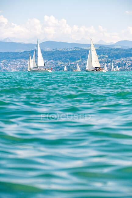 Парусники на озере Цюрих, Швейцария — стоковое фото