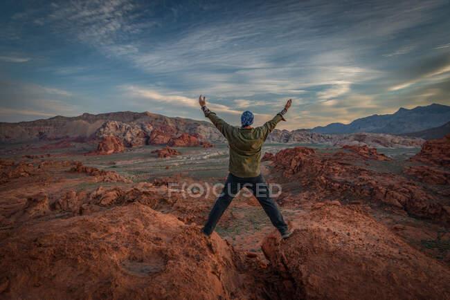 Vista traseira de um homem de pé sobre rochas, Little Finland, Gold Butte National Monument, Nevada, EUA — Fotografia de Stock