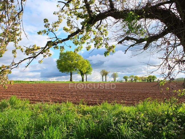 Rural landscape in springtime, Niort, Deux-Sevres, France — Stock Photo