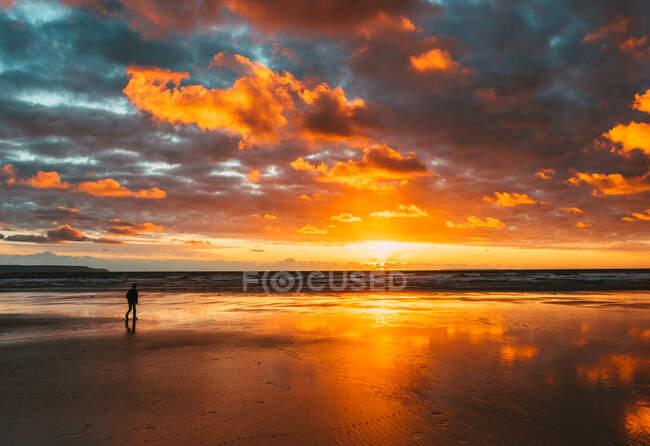 Boy walking along beach at sunset, Westward Ho, Devon, England, UK - foto de stock