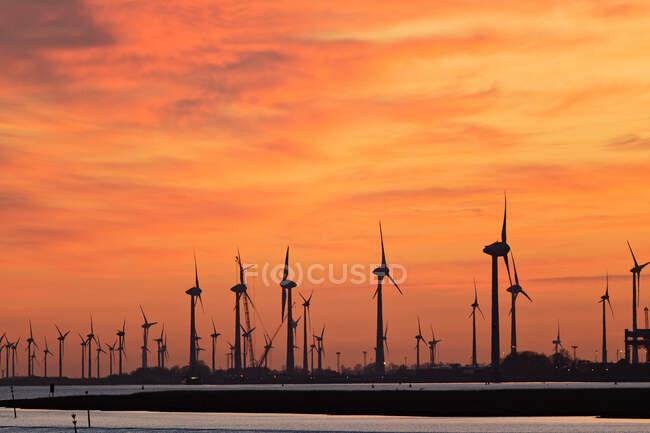 Силует вітряної ферми на заході сонця вздовж річки Емс поблизу Емдена (Нижня Саксонія, Німеччина). — стокове фото