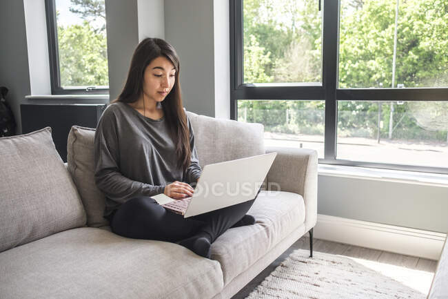 Woman sitting on a sofa working from home - foto de stock