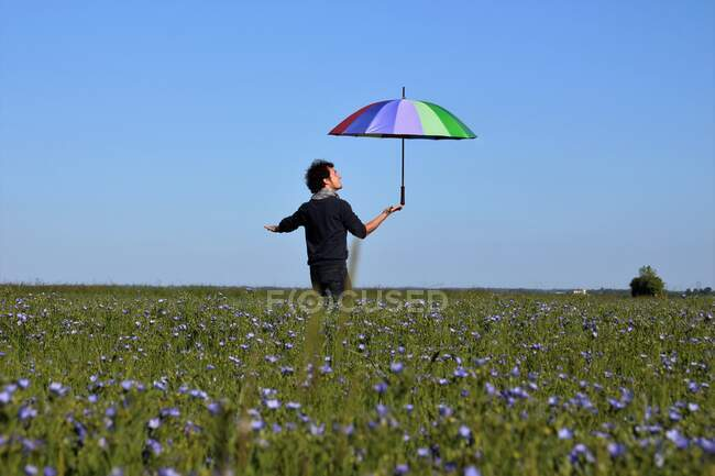 Homem de pé em um campo de linho segurando um guarda-chuva multicolorido, França — Fotografia de Stock