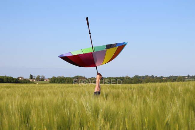 Mano de hombre en un campo de lino sosteniendo un paraguas multicolor al revés, Francia - foto de stock