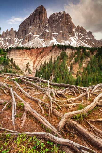 Grosser Peitler e Kleiner Peitler, Alto Adige, Italia — Foto stock