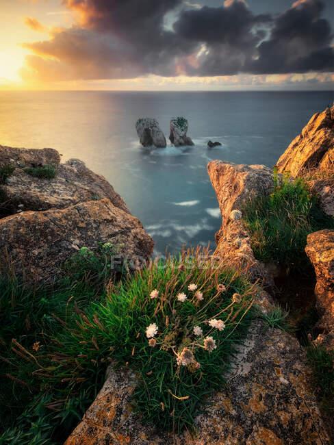 Urro del Manzano sea stacks, Costa Quebrada, Cantabria, Espanha — Fotografia de Stock