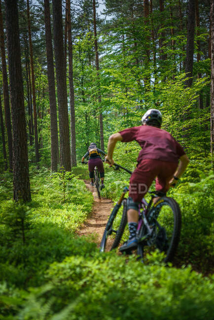 Uomo e donna in mountain bike attraverso la foresta, Klagenfurt, Carinzia, Austria — Foto stock