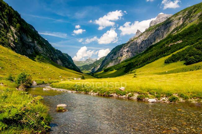 Río en un paisaje alpino, Engstlenalp, Suiza - foto de stock