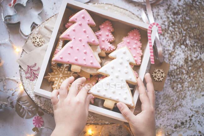 Chico apilando galletas de Navidad hechas en casa en una caja de regalo - foto de stock