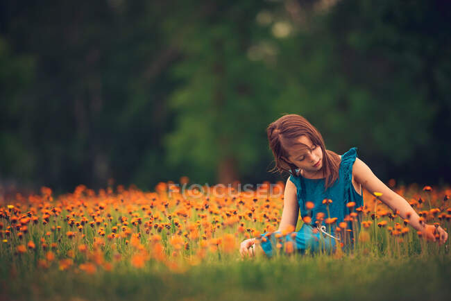 Girl sitting in a meadow picking wildflowers, USA — Stock Photo