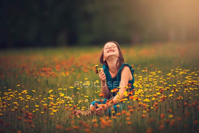 Ragazza felice seduta in un prato a raccogliere fiori di campo, Stati Uniti d'America — Foto stock