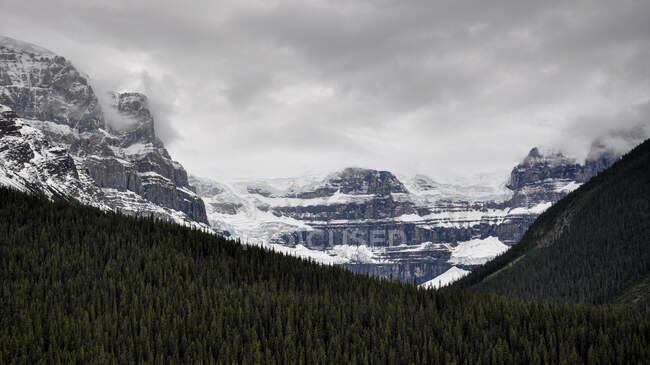 Montañas Rocosas cerca del Lago Bow, Parque Nacional Banff, Alberta, Canadá - foto de stock
