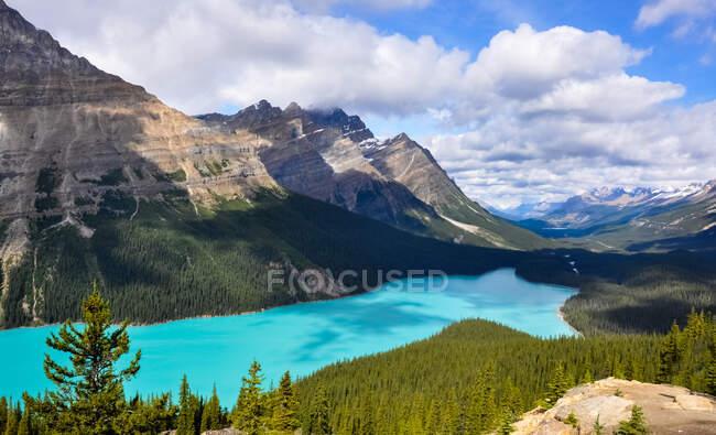 Peyto Lake and Rocky Mountains, Banff National Park, Alberta, Canada — Stock Photo