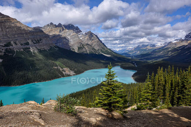 Peyto Lake and Rocky Mountains, Banff National Park, Alberta, Canada — Stock Photo