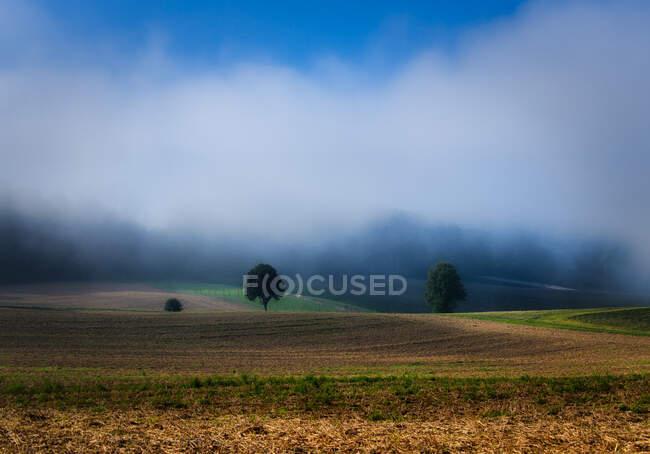 Paesaggio appannato, Argovia, Svizzera — Foto stock