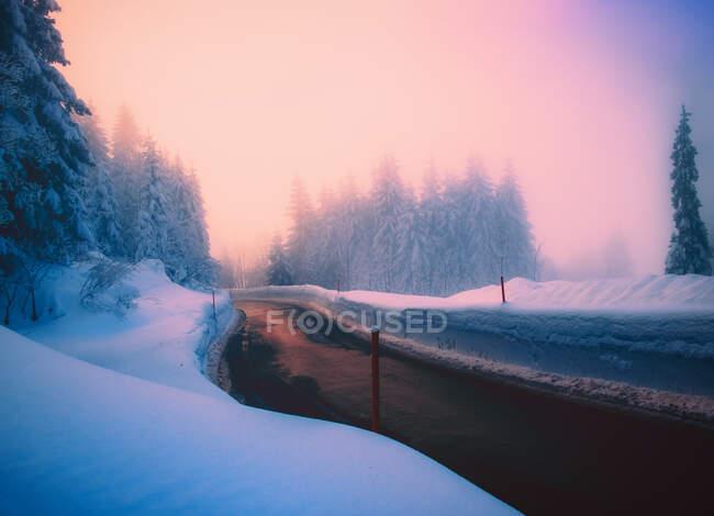 Дорога через снежный зимний пейзаж, Швейцария — стоковое фото
