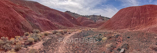 Bentonite Hills im Petrified Forest National Park, Arizona, USA — Stockfoto