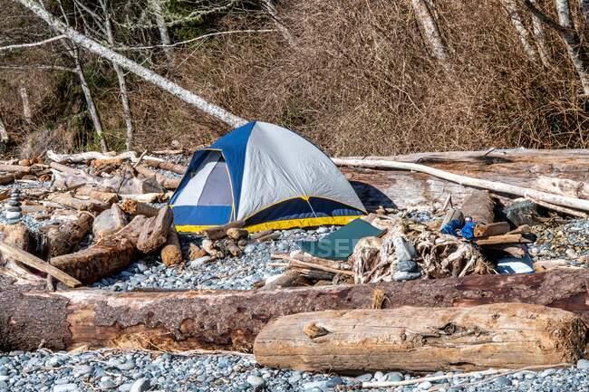 Tente sur un camping de plage, Colombie-Britannique, Canada — Photo de stock