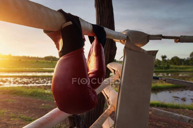 Fitness, deporte, personas y estilo de vida concepto-mujer joven con saltar la cuerda en la playa al atardecer - foto de stock