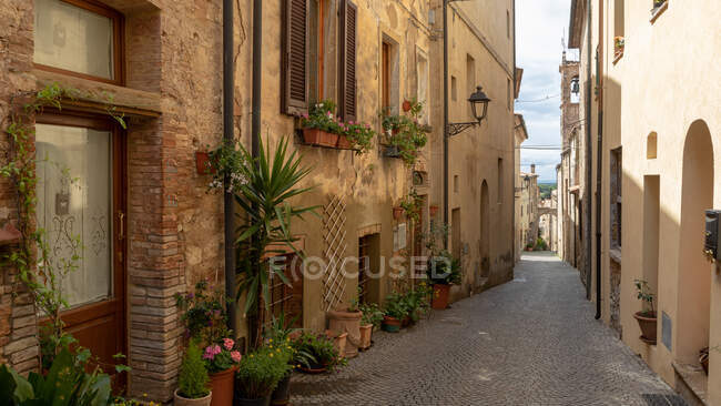 Calle a través de ciudad medieval, Bibbona, Livorno, Toscana, Italia - foto de stock