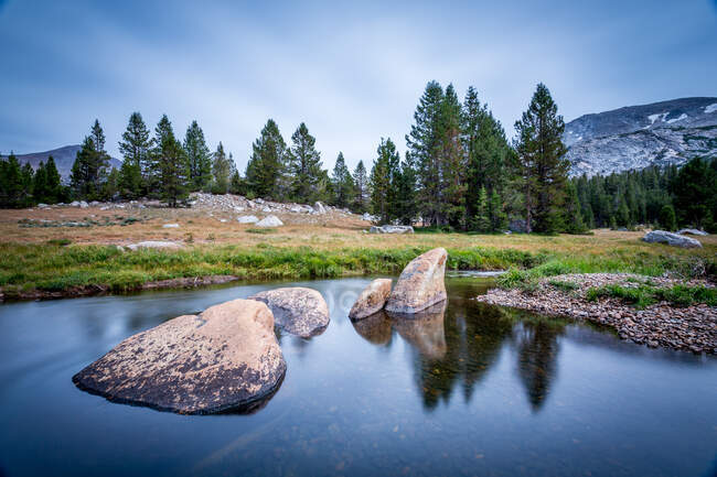 Paisaje rural, Parque Nacional Yosemite, California, EE.UU. - foto de stock