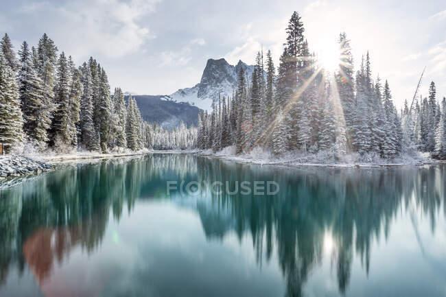 Лес и горные отражения в Изумрудном озере, Национальный парк Банф, Альберта, Канада — стоковое фото