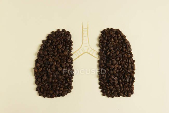 Pulmones humanos conceptuales con granos de café - foto de stock