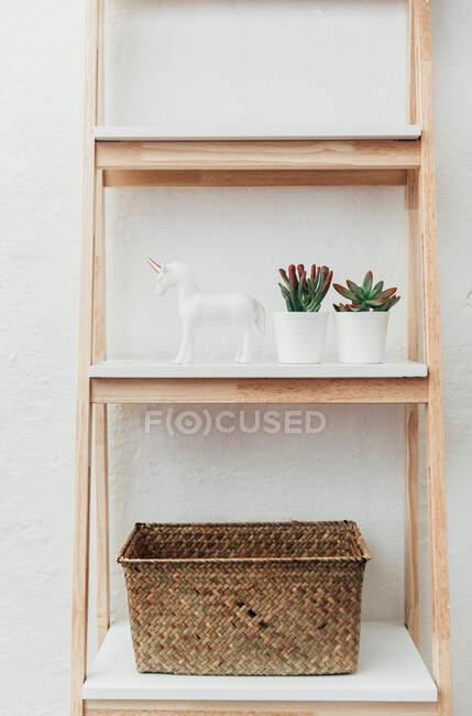 Succulent plants, unicorn ornament and basket on a shelving unit — Stock Photo
